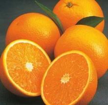 ประโยชน์ของส้ม