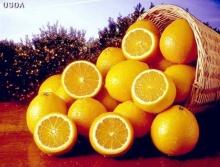 ฟื้นฟูอารมณ์ดี ๆ ด้วยของกินสีส้ม