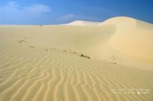 รอยบนผืนทราย