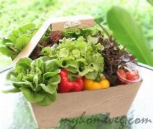 เคล็ดลับกินผักใบเขียวบำรุงสมอง