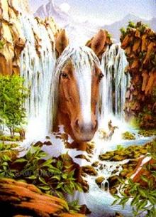 ภาพปริศนา : Horse