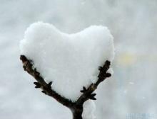 【 .. ขอบเขตของความรัก .. 】