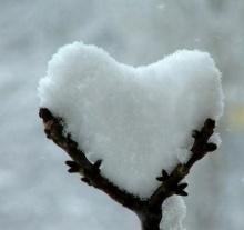 ชอบ / รัก /หลง เหมือน และ ต่างอย่างไร