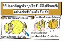 เคล็ดลับ : วิธีผ่าส้มลูกใหญ่ ๆ อย่างเช่นส้มโอ