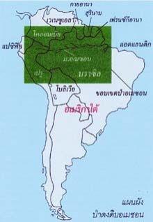 AMAZON ความเล้นลับแห่งป่าดงดิบ