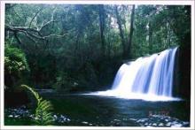 น้ำตกถ้ำค้างคาว น้ำตกสวยของอุทยานแห่งชาติปางสีดา