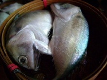 โอเมก้า 3 ลดความเสี่ยง โรคหัวใจ หาได้ใน ปลาทูไทย