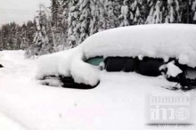 ชายวัยกลางคนติดในกองหิมะนาน 2 เดือนรอดปาฏิหาริย์