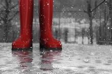 ระวังเชื้อราในหน้าฝน