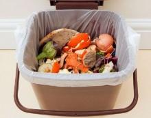 รู้หรือไม่? เราทิ้งขว้างอาหารกันกว่าปีละ 2,000 ล้านตัน