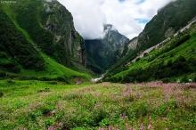 อุทยานแห่งชาตินันทาเทวีและหุบเขาดอกไม้ ประเทศอินเดีย