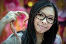 คนฮ่องกง แห่เลี้ยงงูรับปีมะเส็ง