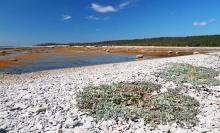 มหัศจรรย์ประติมากรรมหินปูนที่ อุทยานแห่งชาติหมู่เกาะมินแกน