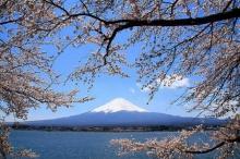 ขาเที่ยวชาวเอเชียตะวันออกเฉียงใต้ เตรียมเฮ! เหินฟ้าตะลุยญี่ปุ่น ไม่ต้องขอวีซ่า(แล้ว)