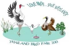 เทศกาลดูนกเมืองไทย ครั้งที่ 12 ที่ สถานตากอากาศบางปู จ.สมุทรปราการ