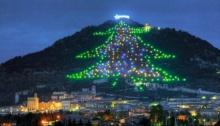 อิตาลีได้ฤกษ์จุดไฟต้นคริสต์มาสที่ใหญ่ที่สุดในโลก