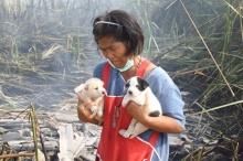 แชร์ว่อน! ป้าน้ำใจงาม วิ่งลุยไฟช่วยลูกสุนัขรอดกองเพลิง