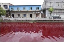 พิศวง!แม่น้ำจีนกลายเป็นสีเลือดไม่ทราบสาเหตุ