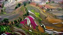 นี่คือ พื้นที่ทำการเกษตร ที่แสนงดงามที่สุดในโลก