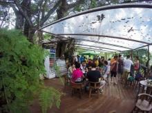 ร้านกาแฟบนต้นไม้ หนึ่งเดียวของเมืองไทย