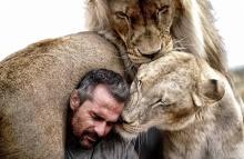 ใกล้ชิดกับสิงโตป่ากว่านี้มีอีกไหม?!?