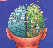 ขนาด ไม่ได้บ่งความฉลาดของสมอง