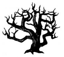 ต้นไม้ปัญหา..!!