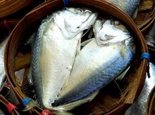 กินปลาทูป้องกัน โรคหัวใจ