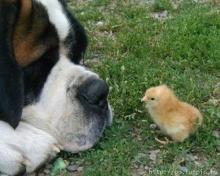 มิตรภาพควรที่จะรักษาไว้