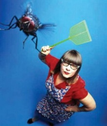 ทำไมแมลงวันบินหนีเร็ว ก่อนถูกตีตาย