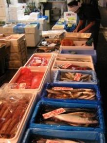 เคล็ดลับน่ารู้ การเลือกซื้อปลา
