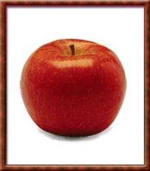 แอ๊ปเปิ้ลสีแดง