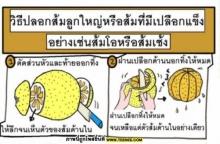 เคล็ดลับการผ่าส้มโอหรือส้มเปลือกแข็ง