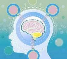 มีสิ่งใดในสมองของสตรี