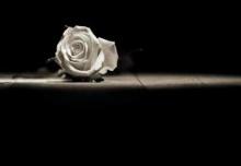 ♣ เติมชีวิต .. ด้วยรัก ♣