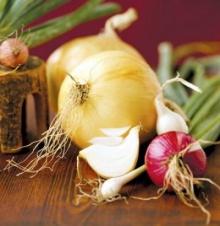 หัวหอมใหญ่ป้องกันมะเร็งตับและลำไส้