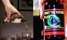 เบียร์แรงที่สุดในโลก แอลกอฮอล์สูงสุด 60%