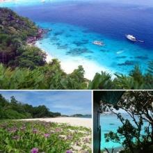 เที่ยวหมู่เกาะสิมิลัน ชมทะเลงาม เกาะสี่