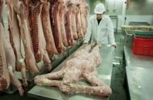 ร้านขายเนื้อมนุษย์!!