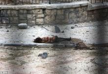 ภาพน่าหดหู่ ....ภาพร่างไร้วิญญาณของเด็กหญิงกลางสมรภูมิสงครามซีเรีย