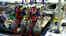 นักวิทย์เจ๋ง ใช้ปัสสาวะผลิตกระแสไฟฟ้าได้ หลังทดลองกับมือถือ