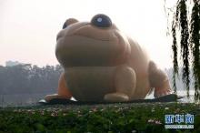"""""""คางคก"""" ใหญ่สุดในเอเชีย โผล่กลางปักกิ่ง"""
