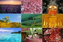 8 สิ่ง 8 สี สวยมหัศจรรย์ในไทย สีสันตระการตา