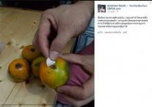 แฉ! กลโกงของแม่ค้าขายส้ม ที่ต้มเราซะเปื่อย