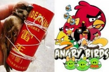 ทำไปได้!! เด็กดื้อจับนกกระจอกมัดกับพลุจรวด เลียนแบบ Angry Birds