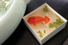อย่างงาม!! สุดยอดศิลปะ 3D บนจานอาหาร สวยแค่ไหน ไปดู