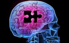 12 วิธีบริหารสมอง...จะได้ไม่เป็นอัลไซเมอร์