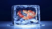 ทำอย่างไรไม่ให้แข็งตายจากความหนาว?