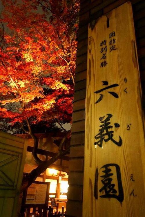 บรรยากาศใบไม้เปลี่ยนสีจากสวน Rikugien ที่กรุงโตเกียว