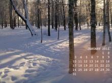 ปฎิทิน wallpaper รับปีใหม่ 2011 สวย ๆ จ้า!!